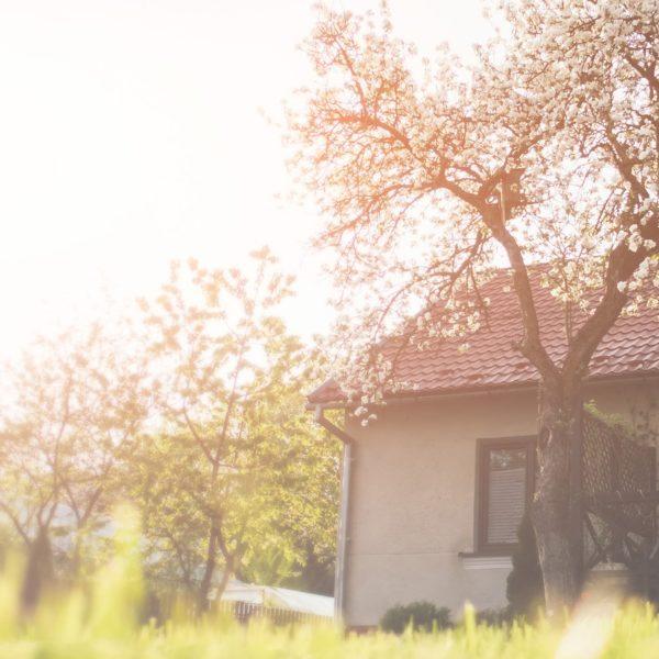 Hostel Ośrodek pomocy dla Osób z Uzależnieniem od Substancji Psychoaktywnych w Janinie pod Kielcami